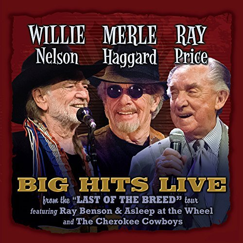 Willie Merle & Ray Big Hits L Willie Merle & Ray Big Hits L