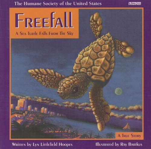 Lyn Littlefiel Hoopes Freefall A Sea Turtle Falls From The Sky