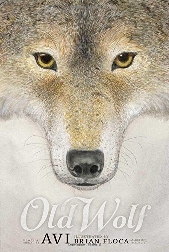 Avi Old Wolf A Fable Reprint