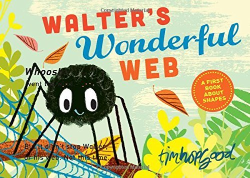 Tim Hopgood Walter's Wonderful Web A First Book About Shapes