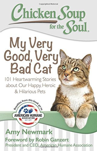 Amy Newmark Chicken Soup For The Soul My Very Good Very Bad Cat 101 Heartwarming Stor