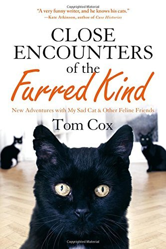 Tom Cox Close Encounters Of The Furred Kind New Adventures With My Sad Cat & Other Feline Fri
