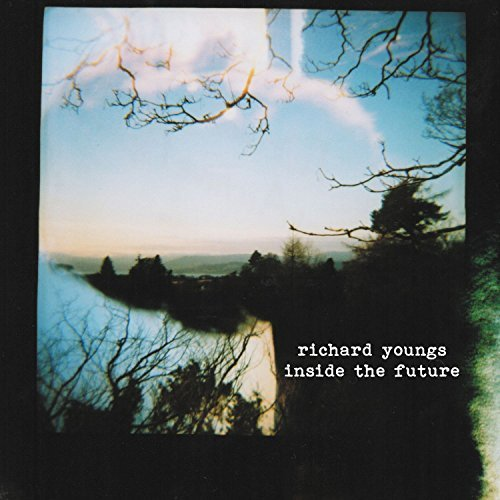 Richard Youngs Inside The Future