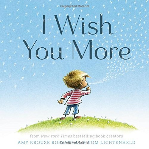 Amy Krouse Rosenthal I Wish You More