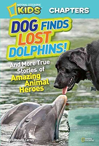 Elizabeth Carney Dog Finds Lost Dolphins! And More True Stories Of Amazing Animal Heroes
