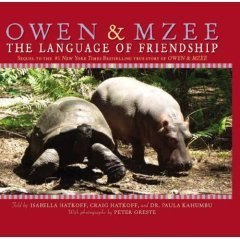 Isabella Hatkoff Owen & Mzee The Language Of Friendship