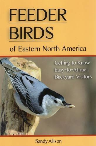 Sandy Allison Feeder Birds Of Eastern North America Getting To Know Easy To Attract Backyard Visitors