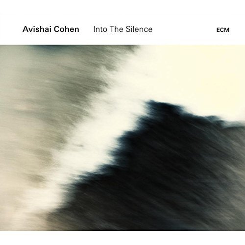 Avishai Cohen Into The Silence
