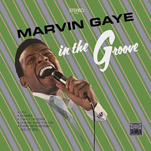 Marvin Gaye In The Groove