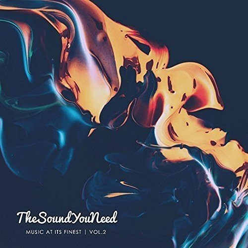 Thesoundyouneed Vol. 2 Thesoundyouneed Vol. 2 Import Gbr