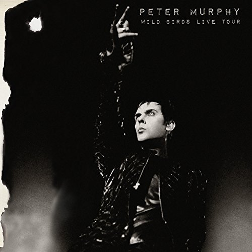 Peter Murphy Wild Birds Live Tour
