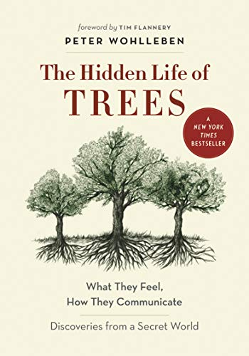 Peter Wohlleben The Hidden Life Of Trees What They Feel How They Communicateadiscoveries