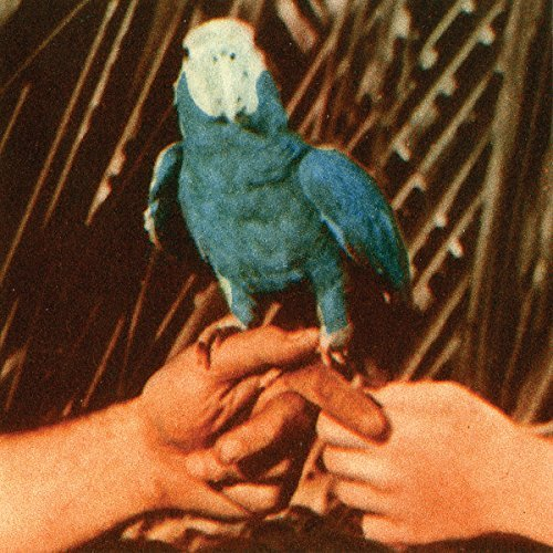 Andrew Bird Are You Serious (lp)