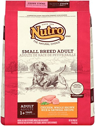 Nutro D Adult Sm Breed 15lb