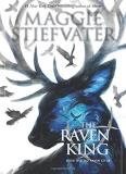 Maggie Stiefvater The Raven King (the Raven Cycle Book 4)