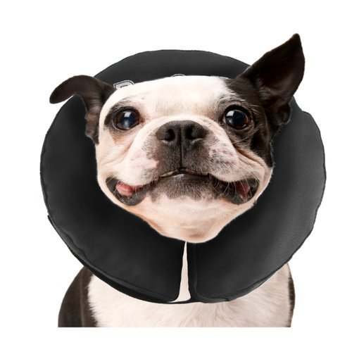 G&b Procollar Inflatable Md Procollar Inflatable Recovery Collar