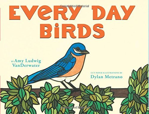 Amy Ludwig Vanderwater Every Day Birds