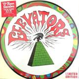 13th Floor Elevators You're Gonna Miss Me