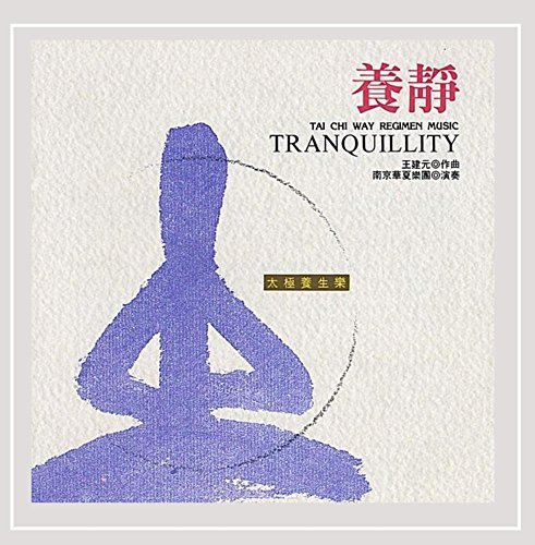 Nanjing Dynasty Orchestra Tranquility