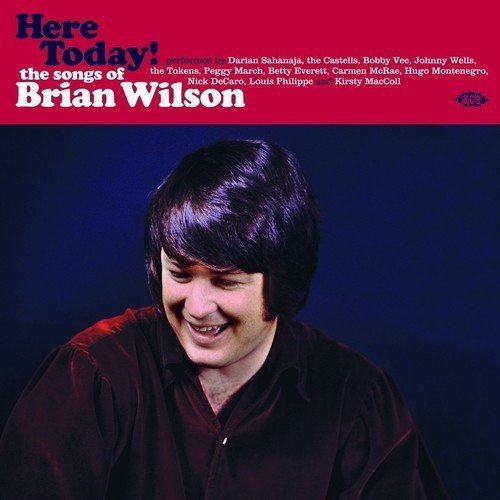 Here Today! Songs Of Brian Wilson Here Today! Songs Of Brian Wilson Import Gbr Lp