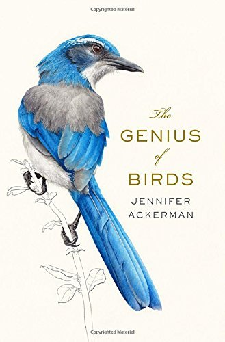 Jennifer Ackerman The Genius Of Birds