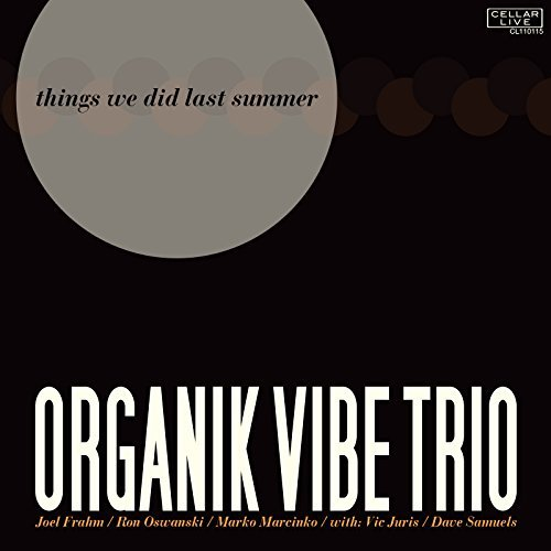 Organik Vibe Trio Things We Did Last Summer