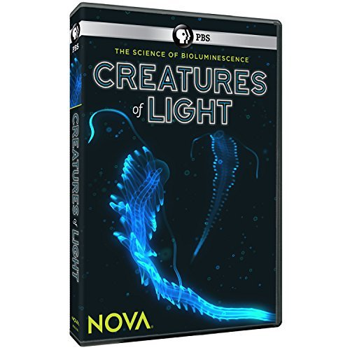 Nova Creatures Of Light Pbs DVD