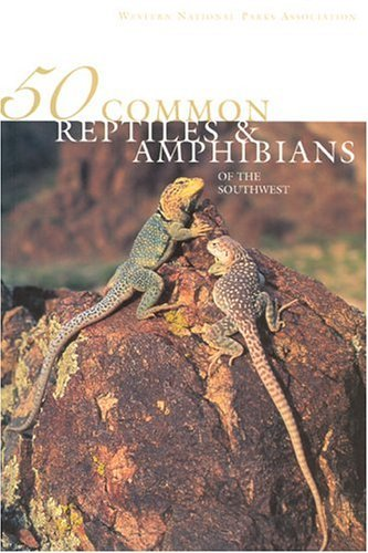 Jonathan Hanson 50 Common Reptiles & Amphibians Of The Southwest