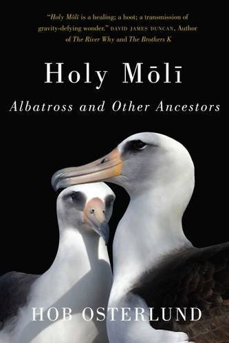 Hob Osterlund Holy Moli Albatross And Other Ancestors
