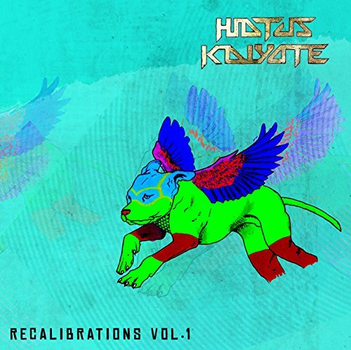 Hiatus Kaiyote Vol. 1 Recalibrations Import 10 Inch Vinyl
