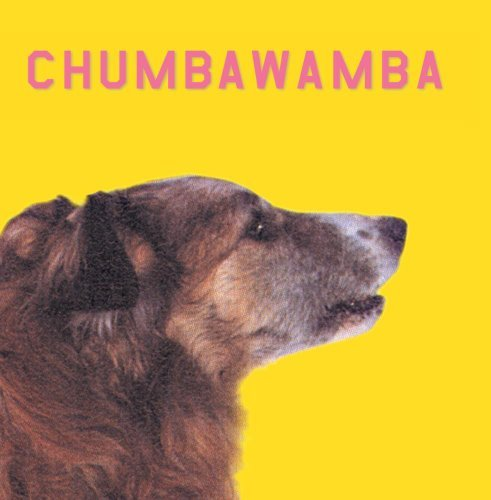 Chumbawamba What You See Is What You Get
