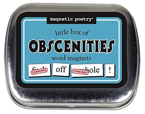 Magnetic Poetry Little Box Obscenities