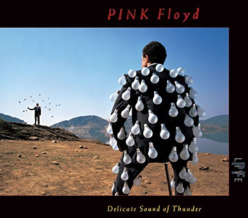 Pink Floyd Delicate Sound Of Thunder (live) 2cd