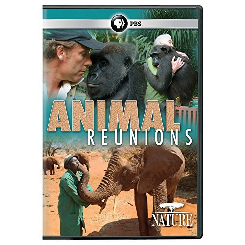 Nature Animal Reunions Pbs DVD Nr