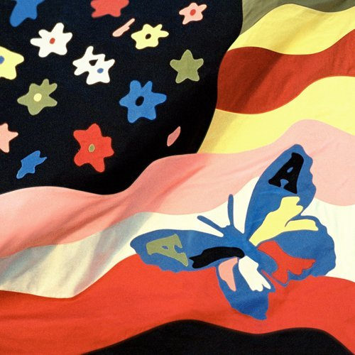 Avalanches Wildflower Explicit Version