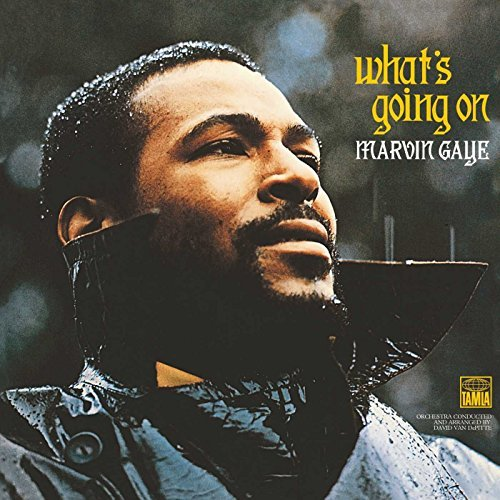Marvin Gaye Whats Going On (lp)