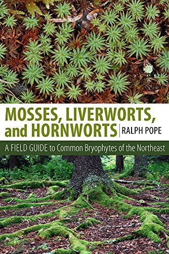 Ralph Pope Mosses Liverworts And Hornworts A Field Guide To Common Bryophytes Of The Northea