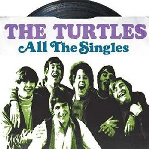 Turtles All The Singles