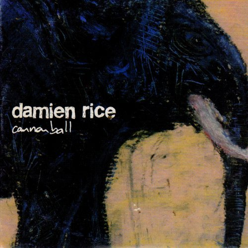 Damien Rice Cannonball