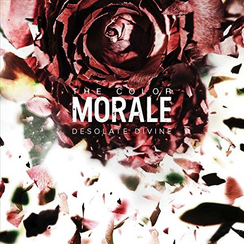 Color Morale Desolute Divine