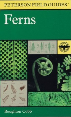 Boughton Cobb A Field Guide To Ferns & Their Related Families Peterson Field Guides