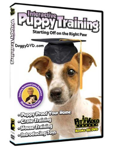 Interactive Puppy Training Start Your Dog Of On The Right Paw