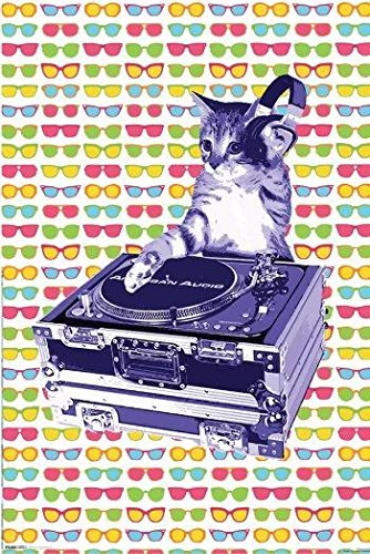 Poster Steez Cat Dj
