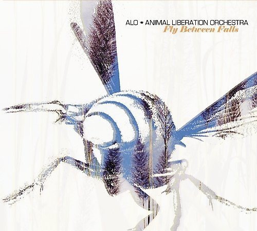 Animal Liberation Orchestra Fly Between Falls Import Eu
