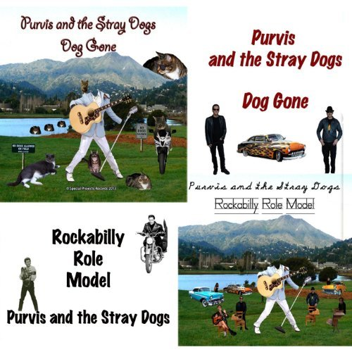 Purvis & The Stray Dogs Dog Gone Rockabilly Role Model