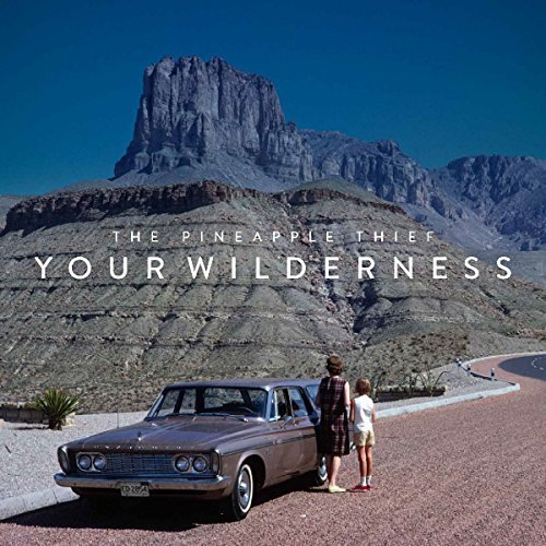 Pineapple Thief Your Wilderness