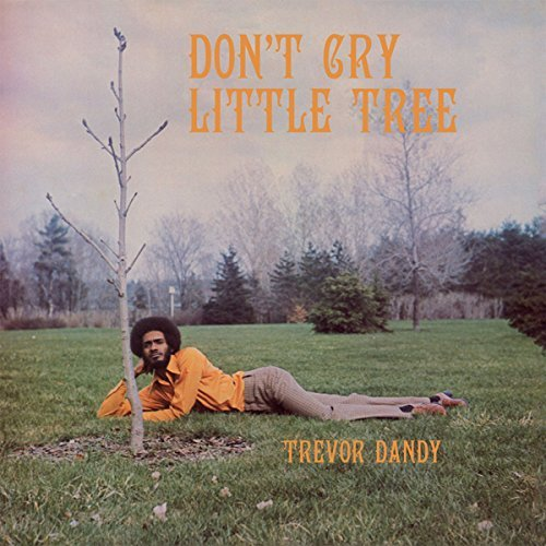 Trevor Dandy Don't Cry Little Tree