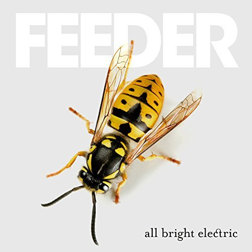 Feeder All Bright Electric Import Gbr