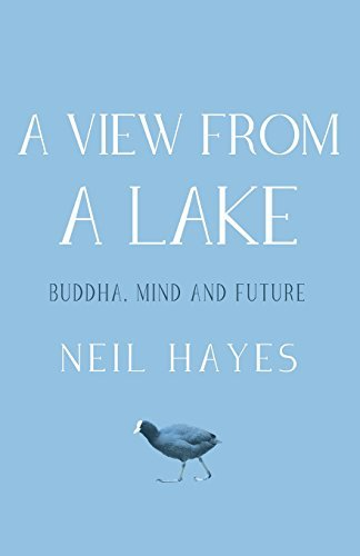 Neil Hayes A View From A Lake Buddha Mind And Future