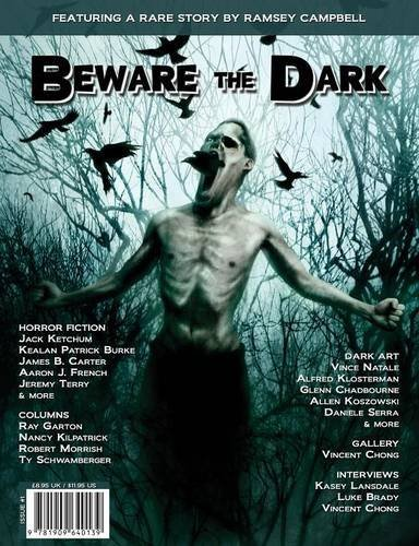Paul Fry Beware The Dark #1